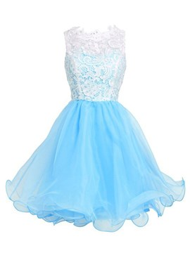 Ericdress Ruffles Lace Short A-Line Organza Homecoming Dress
