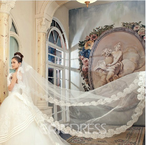 Fabulous Cathedral Tulle Wedding Veil