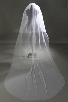 Ericdress Simple Tulle Long Bridal Veil