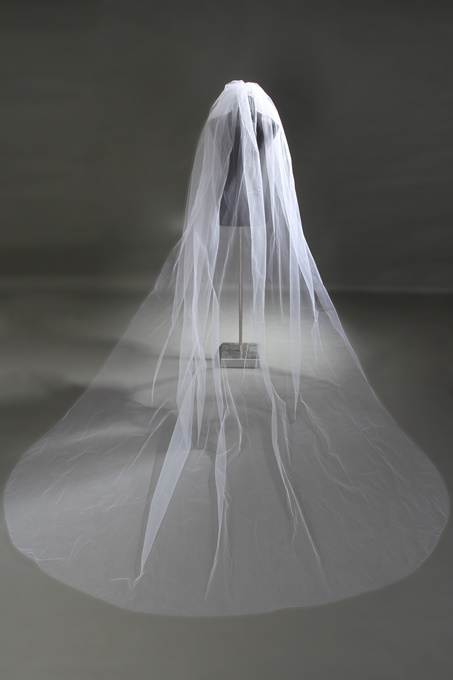 Ericdress Charming Cathedral Length Tulle Wedding Veil