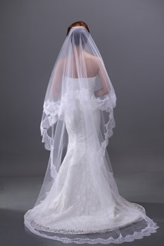 Lace Embellishments Cathedral Wedding Brail Veil