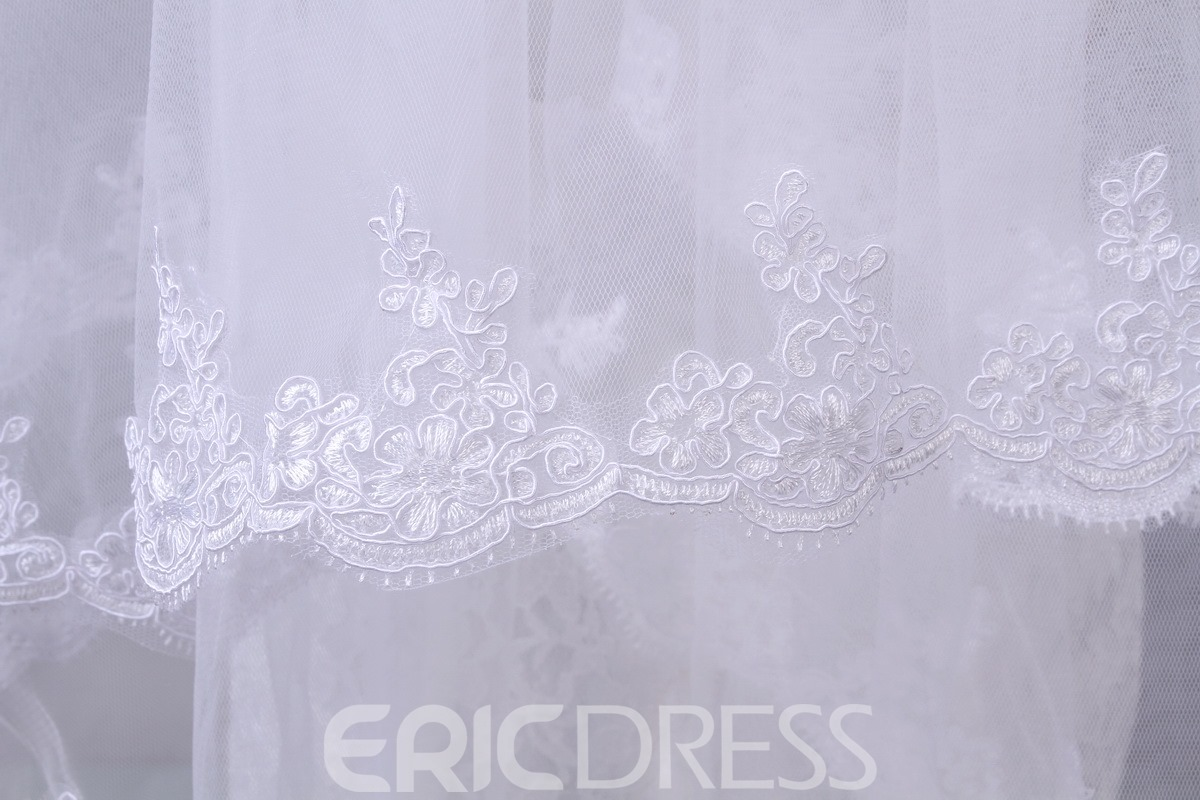 Elegant Applique Tulle Wedding Bridal Veil