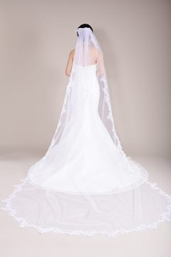 Cathedral Train Long Tulle Bridal Veil with Lace Trim Embellishments