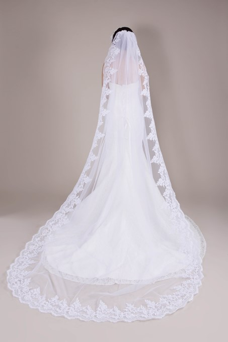 Elegant Cathedral Length Appliques Wedding Veil