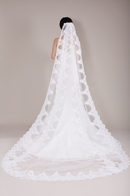 Ericdress Incredible Long Lace Wedding Veil