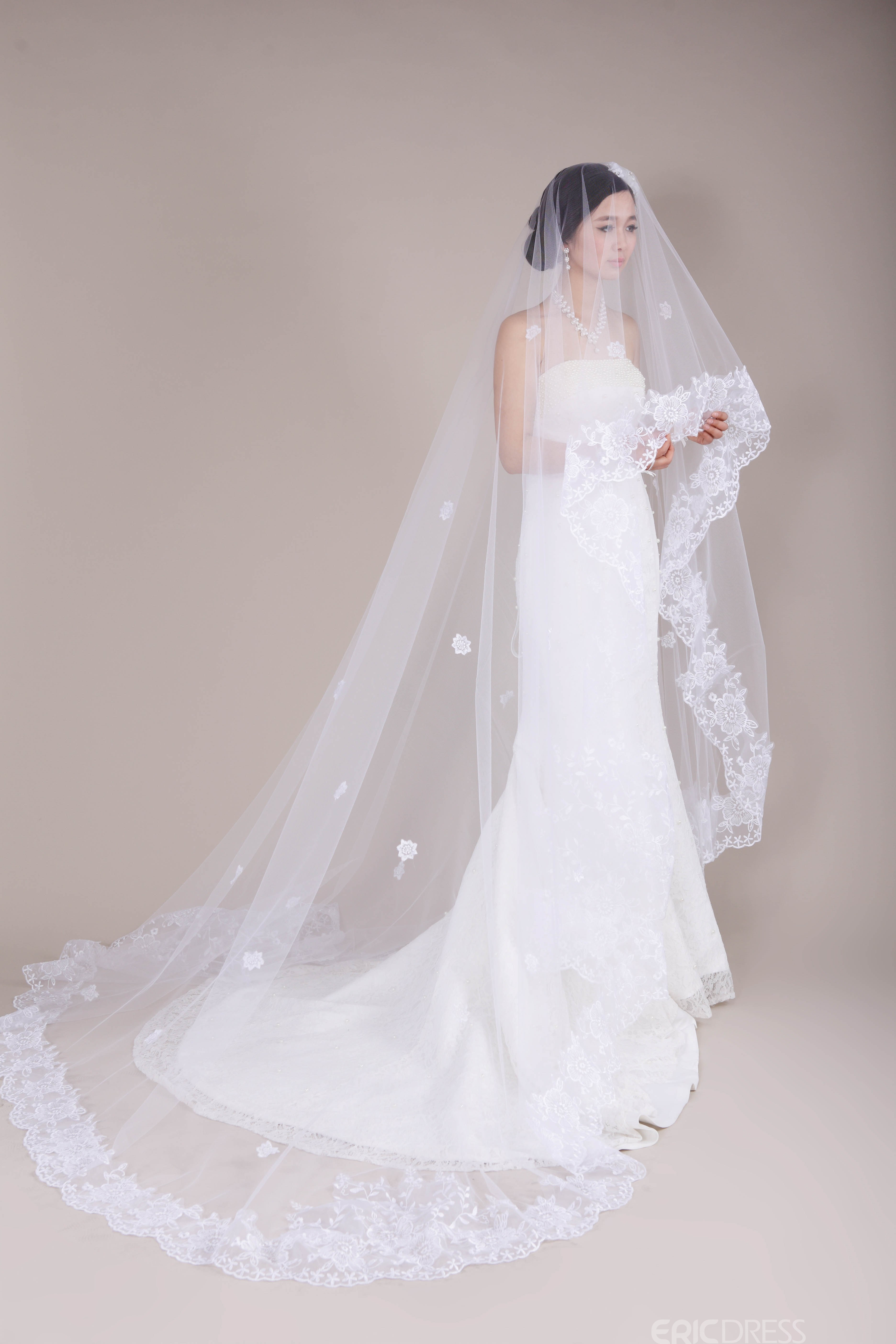 Dramatic Lace Cathedral Length Wedding Veil