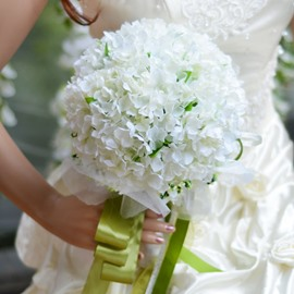 Best Cloths Pure And Fresh And White Flowers Wedding Bouquet
