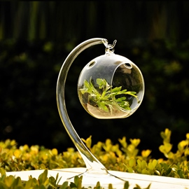 Pretty Hanging Spherical Glass Vases