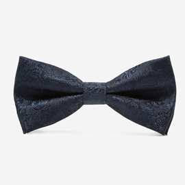 Ericdress British Style Men's Bowtie Tie