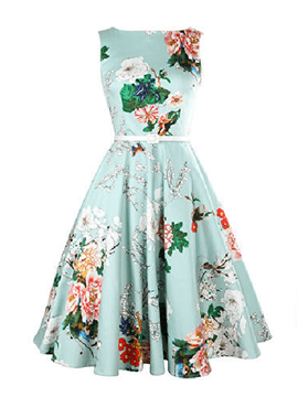 Ericdress Vintage Expansion Sleeveness Floral A Line Dress