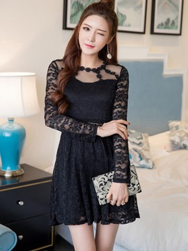 Ericdress Lace Hollow Mesh Patchwork Zipper Lace Dress
