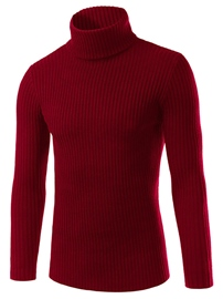 Ericdress plaine Turtle Neck chandail Slim hommes