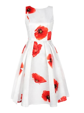 Ericdress Backless Floral Print Pleated Sleeveless Casual Dress