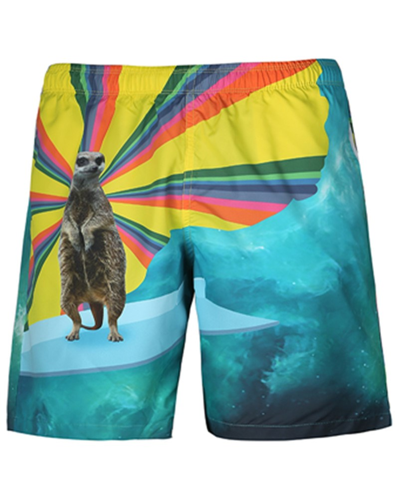 Ericdress Loose Animal Mens Beach Shorts