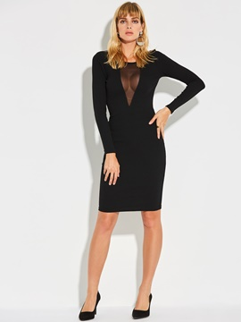 Ericdress See-Through Mesh Patchwork Bodycon Dress