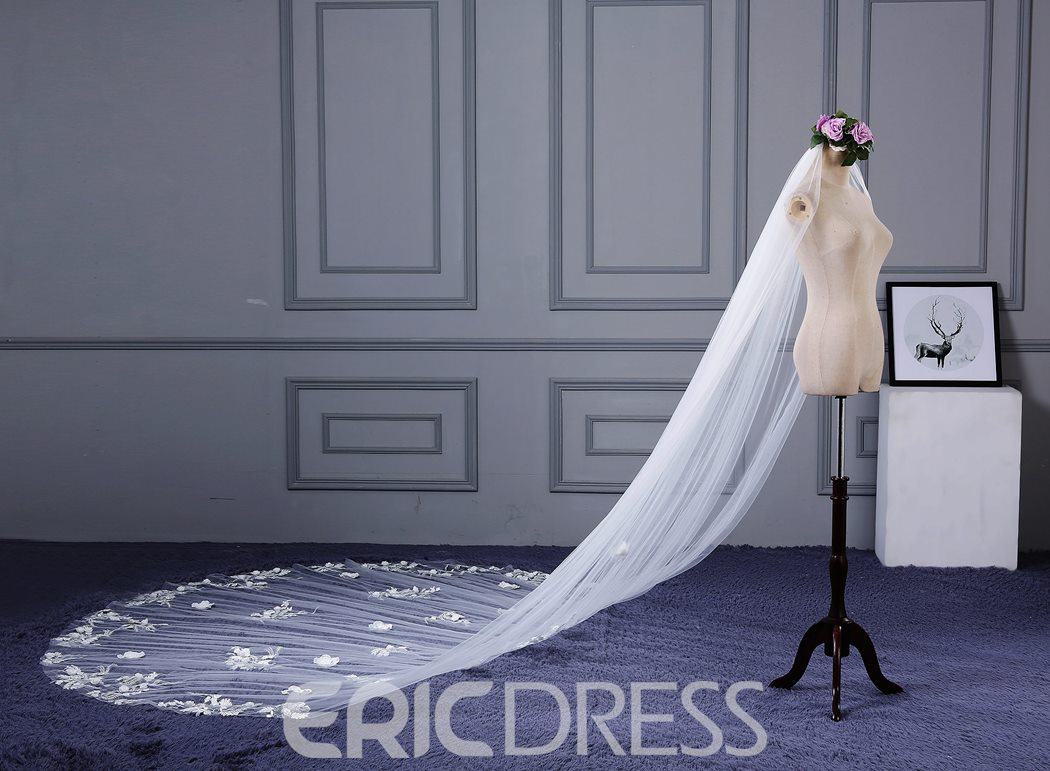 Ericdress Exquisite Appliques Long Wedding Veil