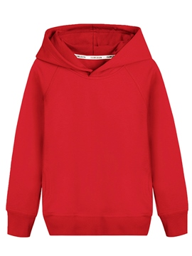 Ericdress Plain Hooded Pullover Boy's Sweater