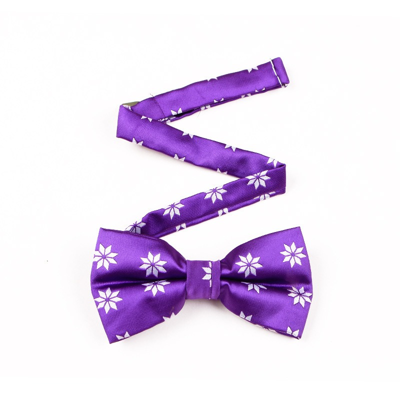 Ericdress Men's Wedding Purple Bowtie