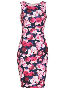 Ericdress Floral Print Sleeveless Women's Bodycon Dress