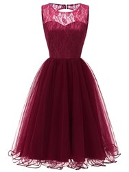 Ericdress Sleeveless Lace A-Line Womens Party Dress