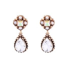 Ericdress Big Water Drop Earrings