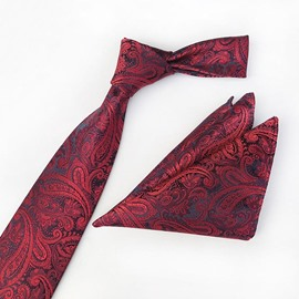 Ericdess Party Men's Tie Set