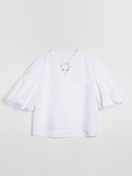 Lantern Sleeve Lapel Women's Blouse