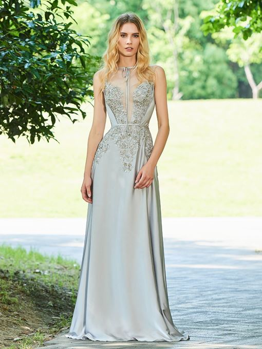 Ericdress A Line Applique Long Evening Dress With Sheer Back