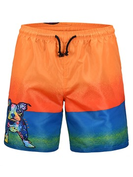 Ericdress Color Block Animal Printed Mens Beach Board Swim Shorts