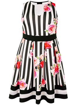 Ericdress V-Neck Floral Stripe Sweet A-Line Dress