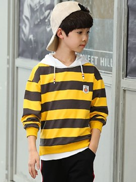 Ericdress Striped Hoodies & Pants Boy's Casual Sports Outfits