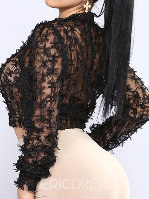 Ericdress Lace See-Through Stand Collar Short Blouse