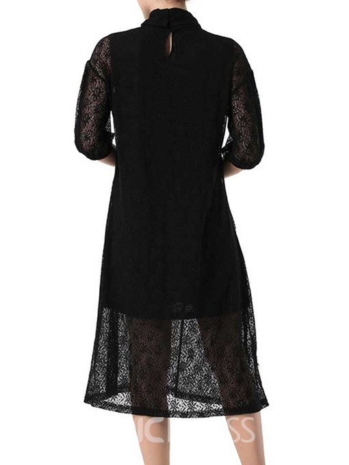 Ericdress Turtleneck See-Through Lace Plain Going Out Dress(Without Waistband)