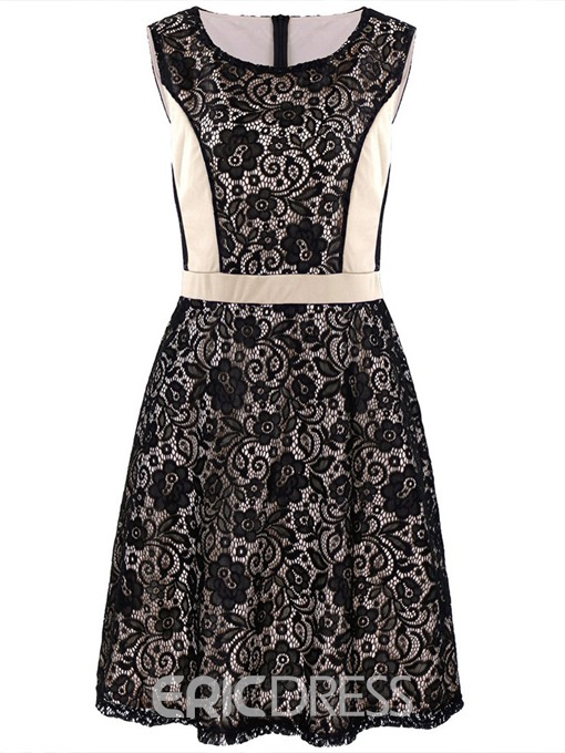 Ericdress Plus Size Lace A-Line Round Neck Sleeveless Lace Dress