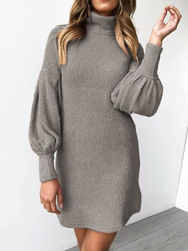 Ericdress Above Knee Turtle Neck Long Sleeve Pullover Spring Dress