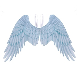 Ericdress Wing Accessories