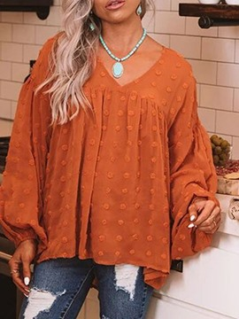 Ericdress Appliques Lantern Sleeve V-Neck Mid-Length Long Sleeve Women's Blouse